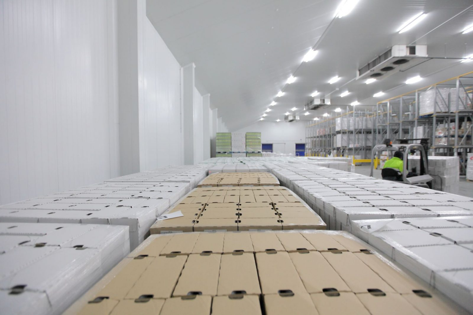 Image of cold storage facility.